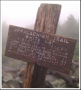 Appalachian Trail Photos