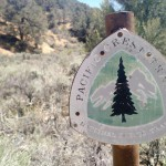 PCT 30 – Lake Isabella