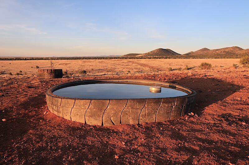 Cattle tank