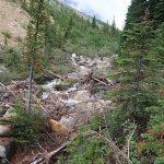 GDT 24 – Owen Creek