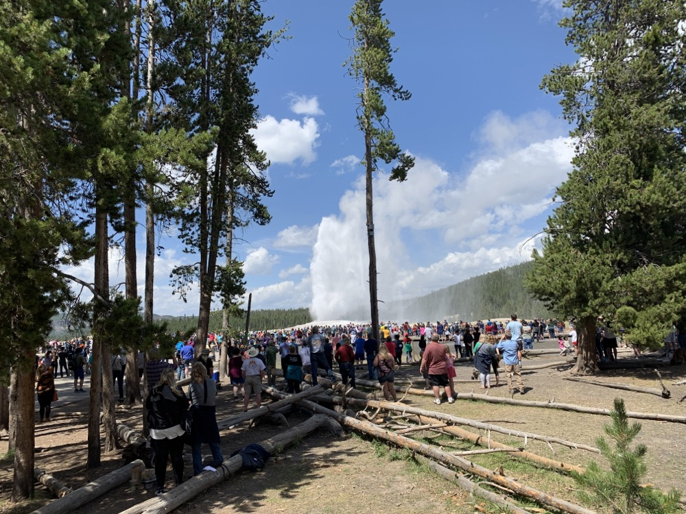 Old Faithful and the crowds